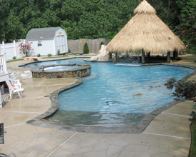 Pool with Tiki Hut