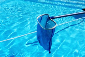 Types of Automatic Pool Cleaners