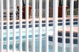 Protect Your Pets with a Pool Fence